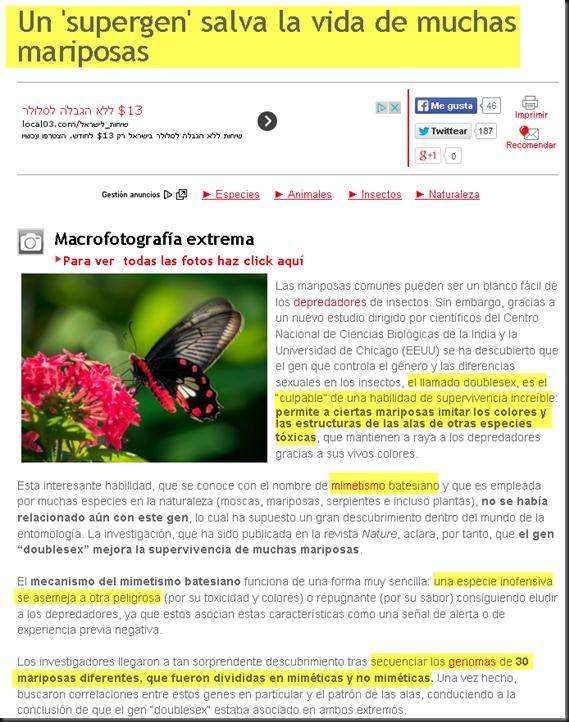 """El gen """"doublesex"""" de las mariposas masacra la hipótesis de la evolución Image_thumb"""